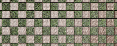 Grid of grass and soil pattern Royalty Free Stock Image