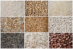 Grid of Nuts and Pulses Royalty Free Stock Image