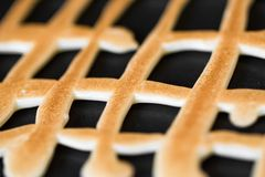 Grid shaped cookies Stock Image