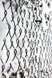 Grid in the snow. Metal net with hoarfrost stock photo