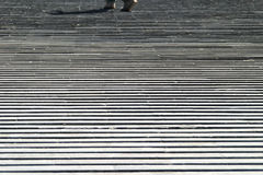 Grid stairs walking walk the line Stock Photography