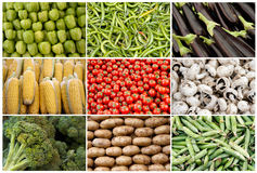 Grid of Vegetables and Fruits Stock Photography