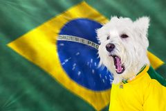 Grida verso ovest al gioco brasiliano fotografia stock libera da diritti