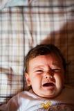 Gridare del bambino immagine stock