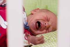 Gridare del neonato Fotografia Stock Libera da Diritti