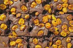Griddle cake. Stock Photos