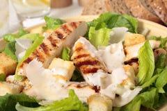 Griddled chicken caesar salad Stock Photos