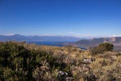 Griechenland-Hügelblume Stockfotos
