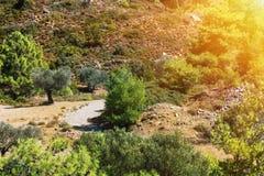 Griechenland-Landschaft Lizenzfreie Stockbilder