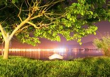 Griechenland-Nachtseelandschaft des Baums und des Bootes stockbild