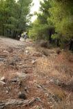 Griechenland-Natur Der malerische Park Stockbild