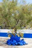 Griechische Art des grünen Baums verziert mit blauen Steinen auf Rhodos-Insel, Griechenland Stockbild