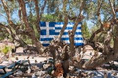 Griechische Flagge unter den Baumniederlassungen Lizenzfreie Stockfotografie