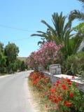Griechische Inselstraßenszene mit Blumen Stockfotografie