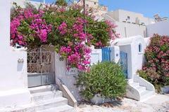 Grieks de zomerterras in Santorini Stock Afbeeldingen