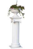 Griekse kolom met bloem op de bovenkant Stock Foto