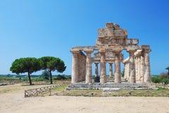 Griekse Tempel in Paestum, Italië Stock Foto's