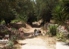Griekse tuin Royalty-vrije Stock Fotografie