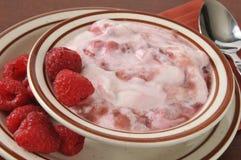 Griekse yoghurt met frambozen Royalty-vrije Stock Afbeeldingen