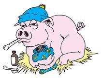 Griep 02 van varkens Stock Fotografie