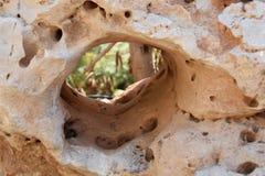 Grieta en la piedra Imagenes de archivo