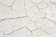 Grietas de sequía del fractal en la superficie blanca, primer Imagen de archivo libre de regalías