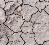 Grietas del suelo seco Imagenes de archivo