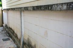 Grietas en las paredes mohosas Foto de archivo