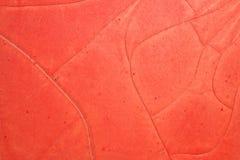 Grietas rojas de la pintura Imagen de archivo libre de regalías