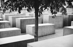 Grieving loneliness. A lonely tree in the Holocaust Memorial - Berlin, Germany. Grieving loneliness Stock Photos