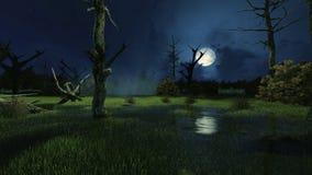Griezelig moeras bij donkere nevelige nacht vector illustratie