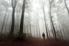 Griezelige donkere mens in mistig bos Royalty-vrije Stock Afbeelding