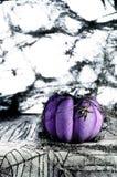 Griezelige Halloween-scène van spinnewebben en purpere pompoen stock foto
