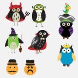 Griezelige Halloween-Uilen Stock Fotografie