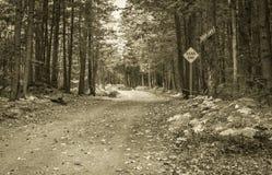Griezelige Impasseweg stock afbeelding