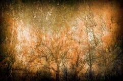 Griezelige kunst grunge achtergrond met bomen Stock Afbeelding