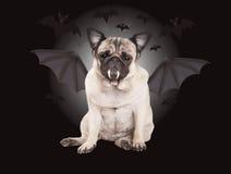Griezelige leuke pug puppyhond omhoog gekleed als knuppel voor Halloween Stock Fotografie