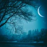 Griezelige nacht Stock Afbeelding