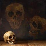 Griezelige schedel Stock Fotografie