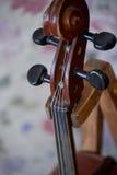 Grif老棕色小提琴 在明亮的背景墙纸 关闭 图库摄影
