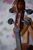 Grif old brown violin. Be on the bright background Wallpaper.Close Stock Photography