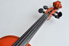 Grif skrzypce. Zdjęcie Stock