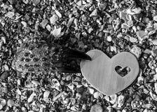 Griffe de crabe tenant un coeur sur une plage Photos stock