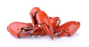 Griffes bouillies de crabe images libres de droits