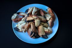 Griffes de crabe de côte atlantique image libre de droits