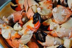 Griffes de crabe en pierre Images stock