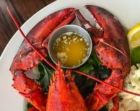 Griffes de homard pour le dîner photographie stock libre de droits