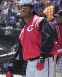 Griffey Jr , Cincinnati Reds Fotografering för Bildbyråer