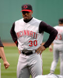 Griffey Jr. ken Royaltyfria Bilder