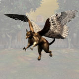 Griffin 03 Stock Image
